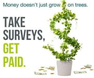 moneytree 300x250 1